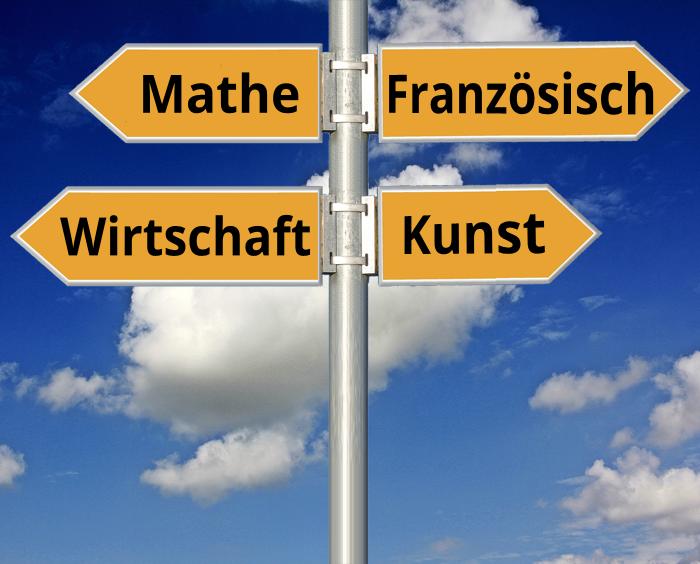 Wahl der Ausbildungsrichtung